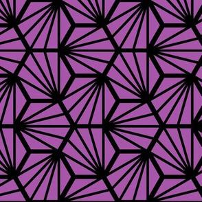 Geometric Pattern: Hexagon Ray: Purple Black