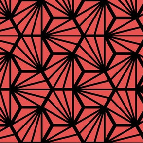 Geometric Pattern: Hexagon Ray: Red Black