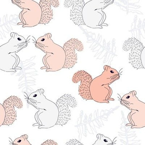 Squirrels Gray