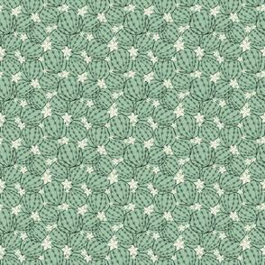 Bloom_cactus_text3_seaml_stock