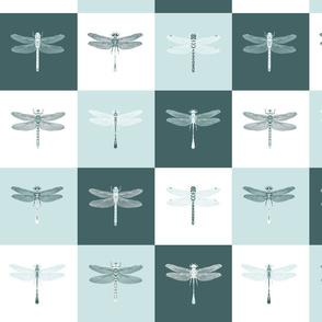 Dragonflies on Blocks