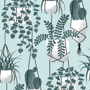 Pine and Mint Hanging Planters