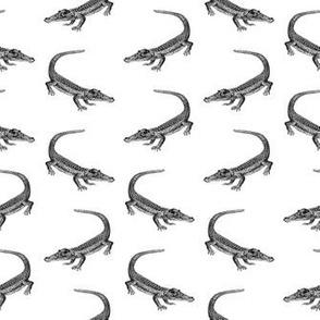 Classic Alligator Print (Small Print Size)