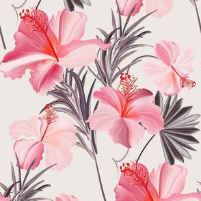 Hibiscus pink exotic
