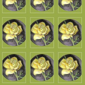 Dianes rose-1