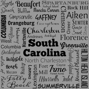 Cities of South Carolina, std grey