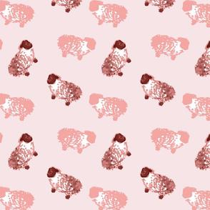 Counting sheep Pink