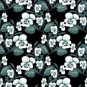 White viola cluster double b