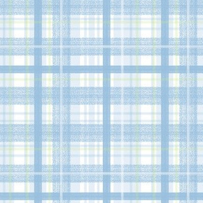 Blue and Green Plaid by Angel Gerardo
