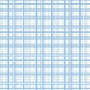 Blue Plaid - Small Scale by Angel Gerardo