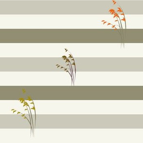 Stripes, grasses