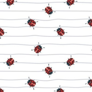 Ladybug childish on lines