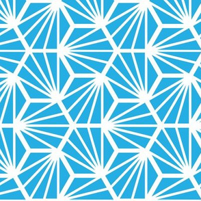 Geometric Pattern: Hexagon Ray: Blue White