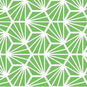 Geometric Pattern: Hexagon Ray: Green White