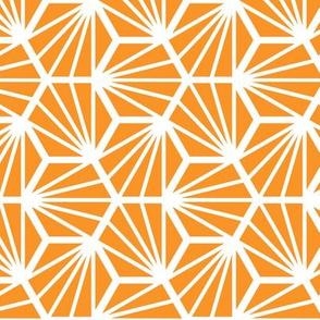 Geometric Pattern: Hexagon Ray: Orange White