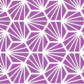 Geometric Pattern: Hexagon Ray: Purple White