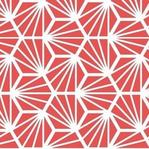 Geometric Pattern: Hexagon Ray: Red White