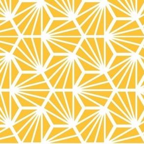 Geometric Pattern: Hexagon Ray: Yellow White
