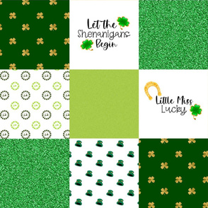 Little Miss Lucky - Wholecloth Cheater Quilt - Rotated