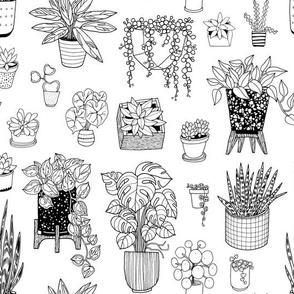 houseplants - black + white - coloringbook