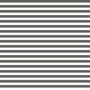 Dark Grey and White Stripe 1 to 1