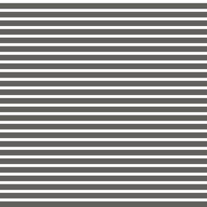 Dark Grey and White Stripe 1 to 2