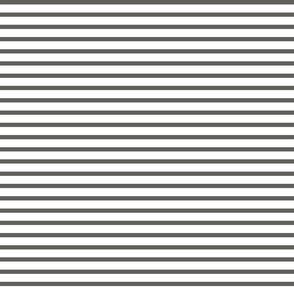 Dark Grey and White Stripe 2 to 1