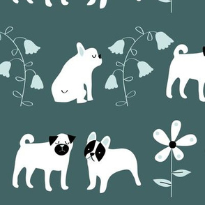 Wee dogs in green and green_©Solvejg Makaretz