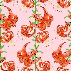 Tiger Lilies (Pink Background)