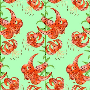 Tiger Lilies (Green Background)