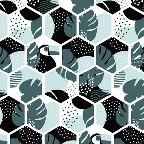Tropical hexagons