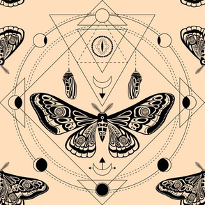 Night moth 1. Sacred geometry