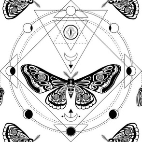Night moth 6. Sacred geometry