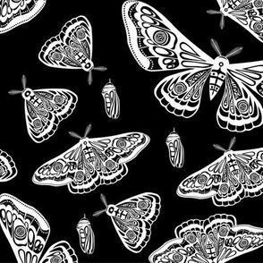 Night moth 9. Sacred geometry