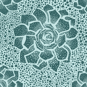 Minty Succulent