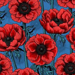 Red anemone garden