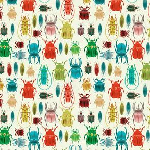 Beetle Bonanza - light