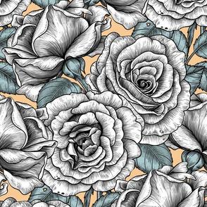 White roses on Tequila Sunrise background
