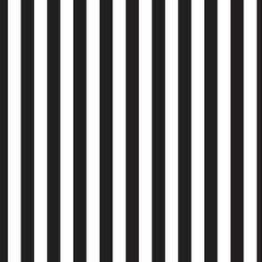 Black & White Stripes, Vertical