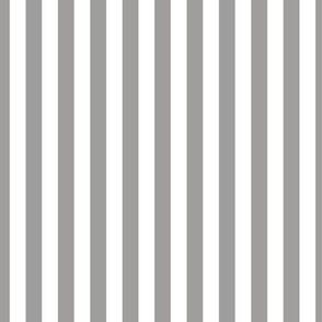 Light Gray Stripes, Vertical