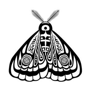 Night moth 14
