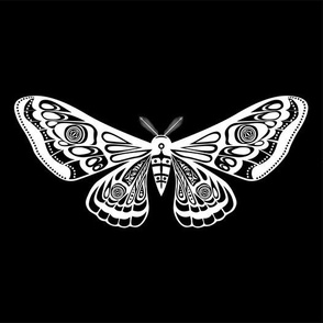 Night moth 16