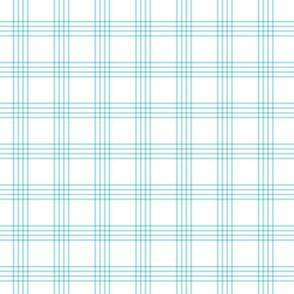 pastel teal plaid coordinate