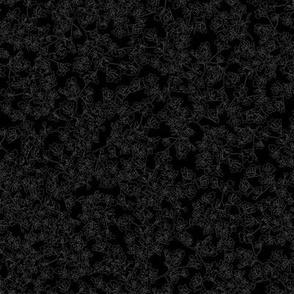 Yarrow White Outline on Black