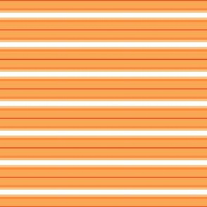 So Peachy Sweet Fruit / Painterly Peach - Orange -Horizontal Stripe