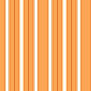 So Peachy Sweet Fruit / Painterly Peach - Orange Sorbet Vertical  Stripes