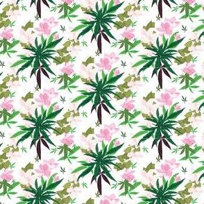 Cannabis Frangipany Floral