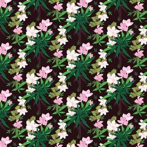 Dark Cannabis Frangipany Floral