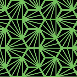 Geometric Pattern: Hexagon Ray: Black Green
