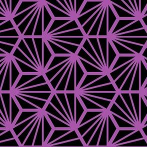 Geometric Pattern: Hexagon Ray: Black Purple